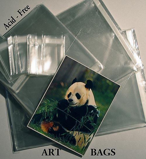 Panda print displayed in Clear Bags acid free protective art bags
